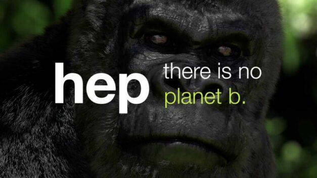 hep_global_Gorilla-George